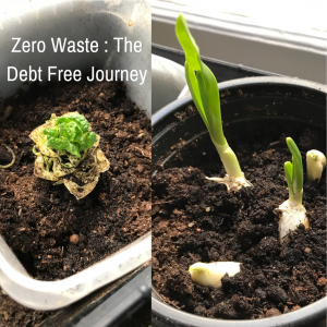 Debt Free Journey - Zero Waste