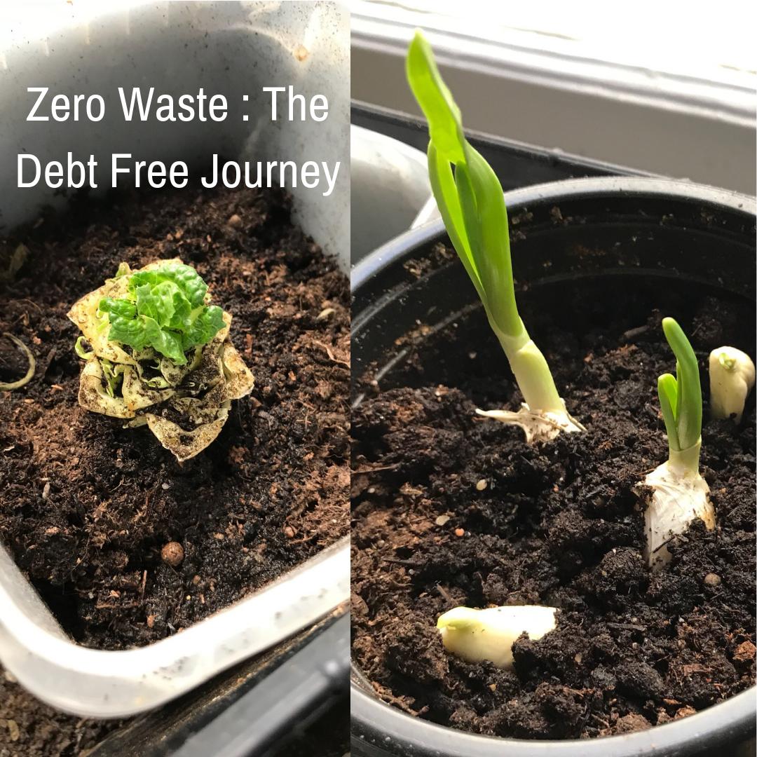 Debt Free Journey - Zero Waste