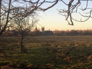 Christ Church Meadow with Merton in the background